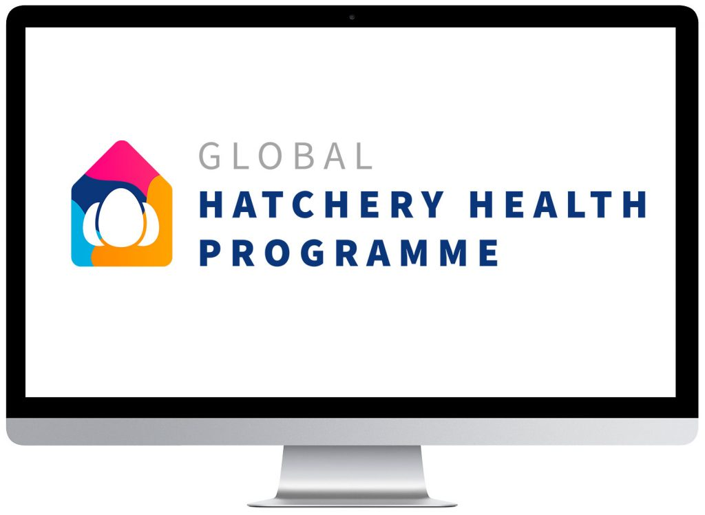 Gumboro IBD - hatchery health program